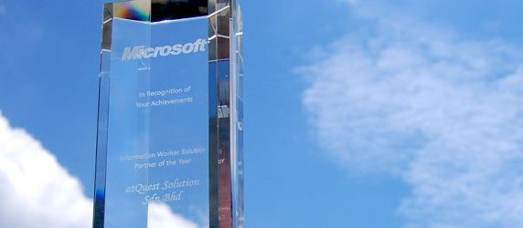 Microsoft Partner Year